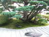 2006_10220010_1