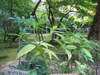 2006_10220034