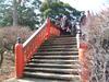 2007_01250009
